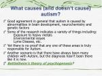 what causes and doesn t cause autism