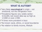 what is autism2