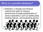 what is a parallel database