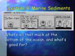lecture 9 marine sediments