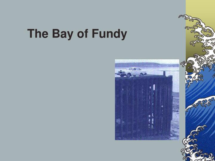 The Bay of Fundy