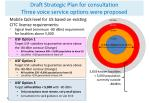 draft strategic plan for consultation three voice service options were proposed