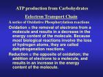 atp production from carbohydrates4