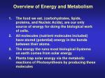 overview of energy and metabolism