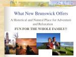 what new brunswick offers