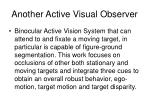 another active visual observer