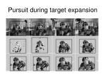 pursuit during target expansion