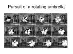 pursuit of a rotating umbrella