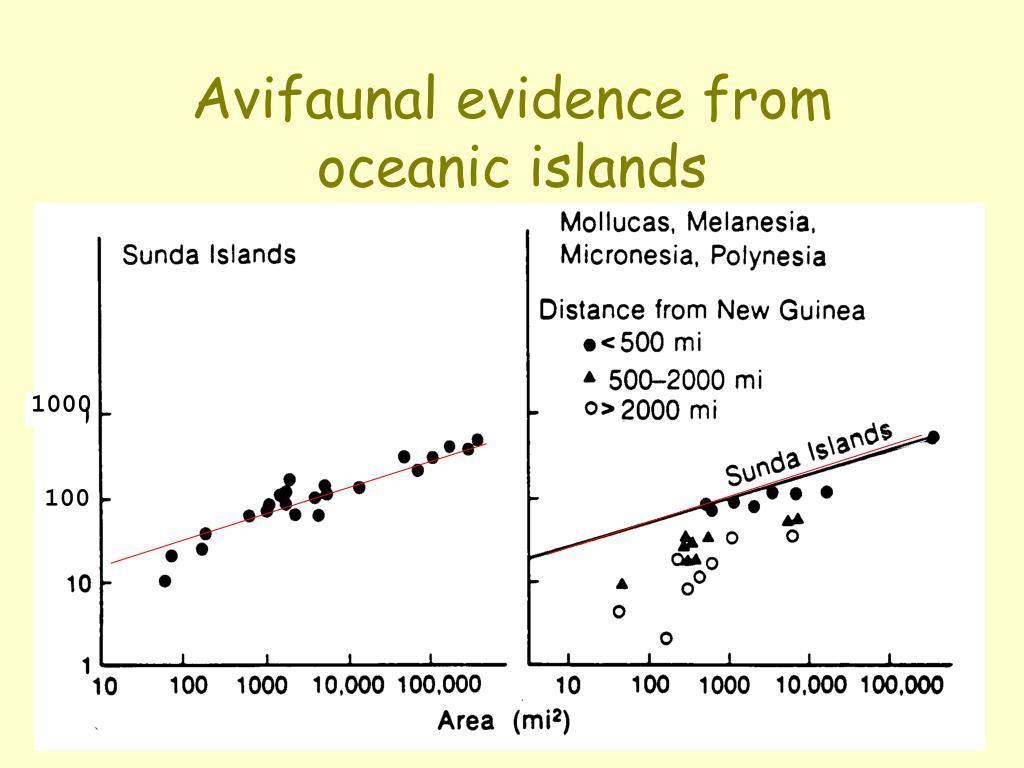 Avifaunal evidence from oceanic islands