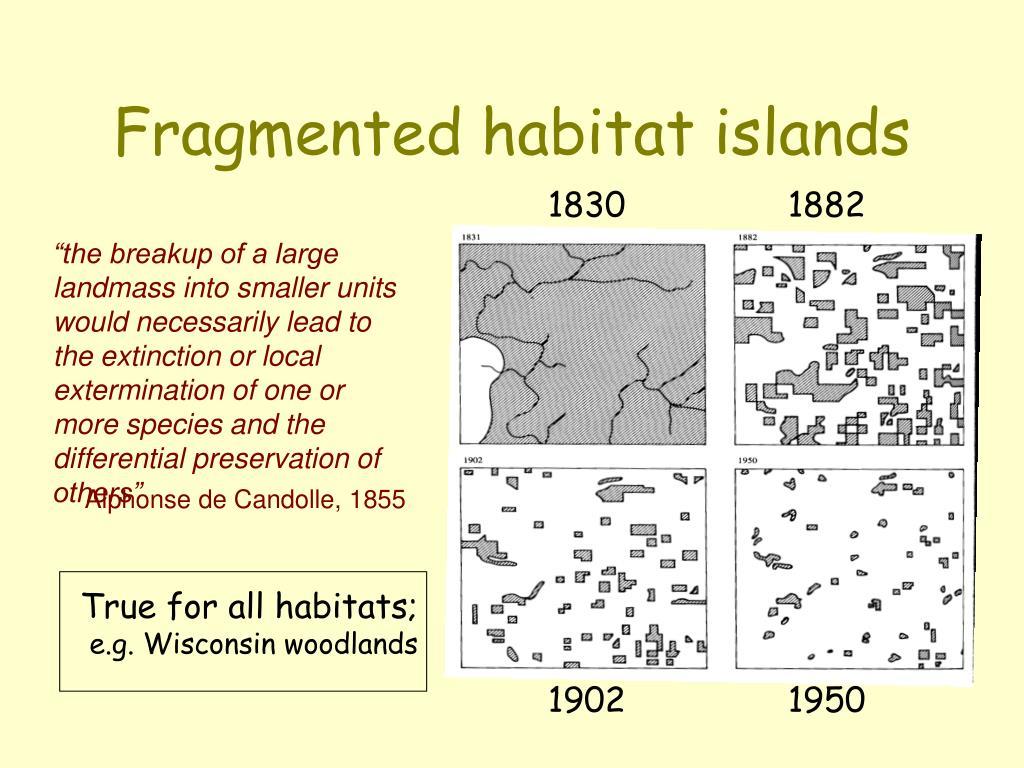 Fragmented habitat islands