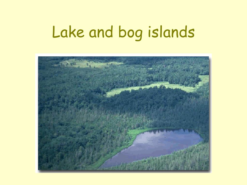 Lake and bog islands
