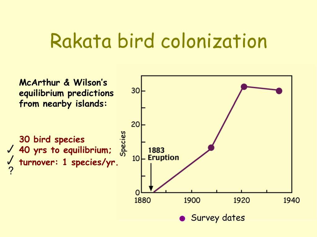 Rakata bird colonization