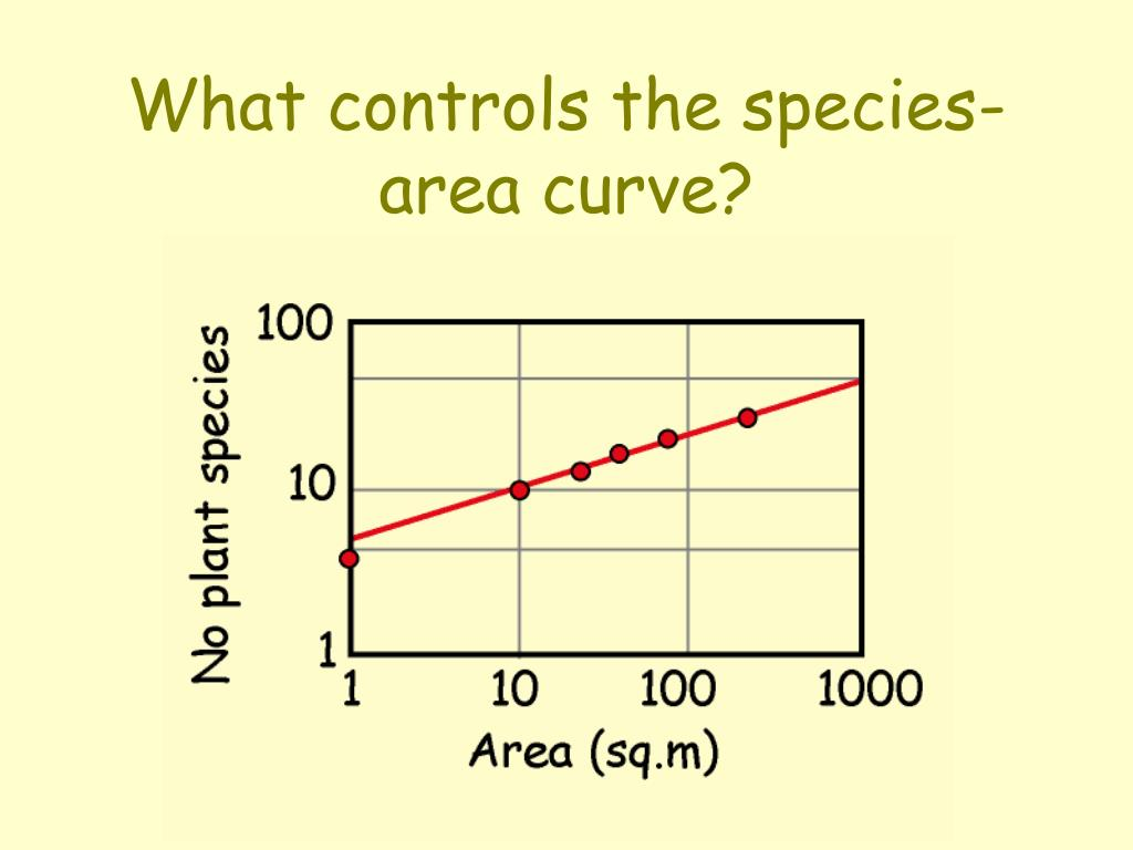What controls the species-area curve?