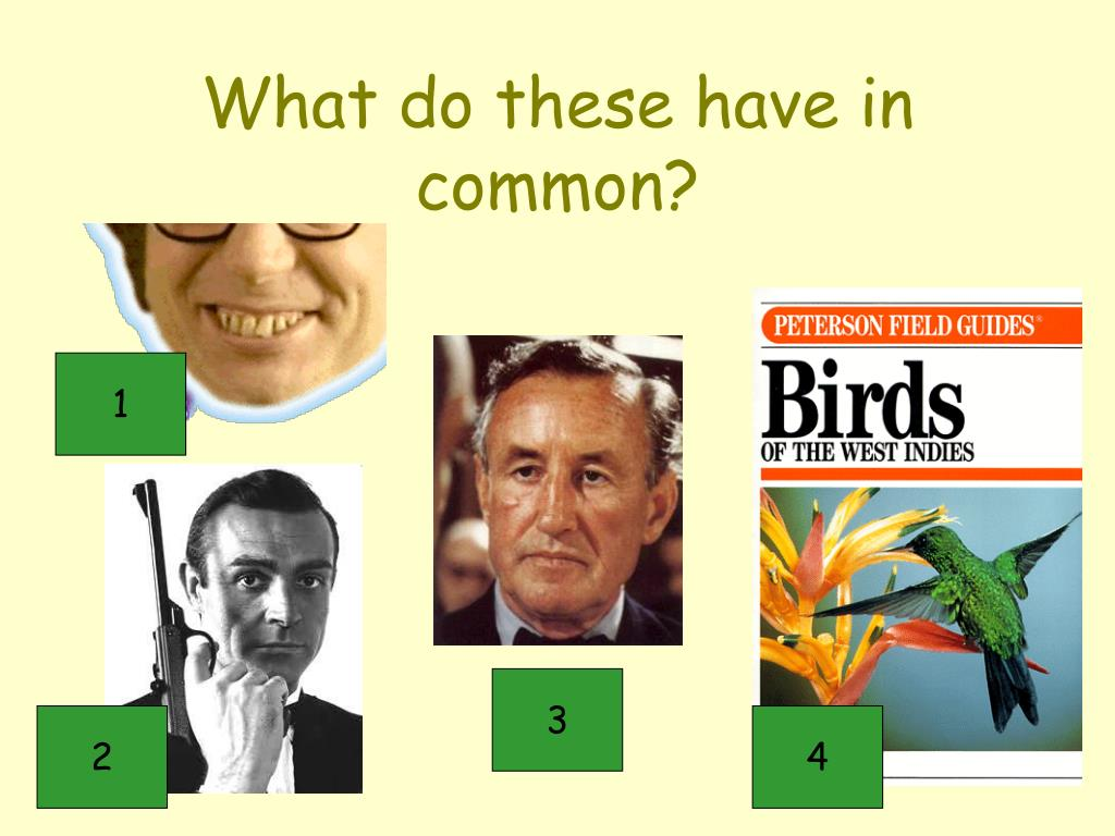 What do these have in common?