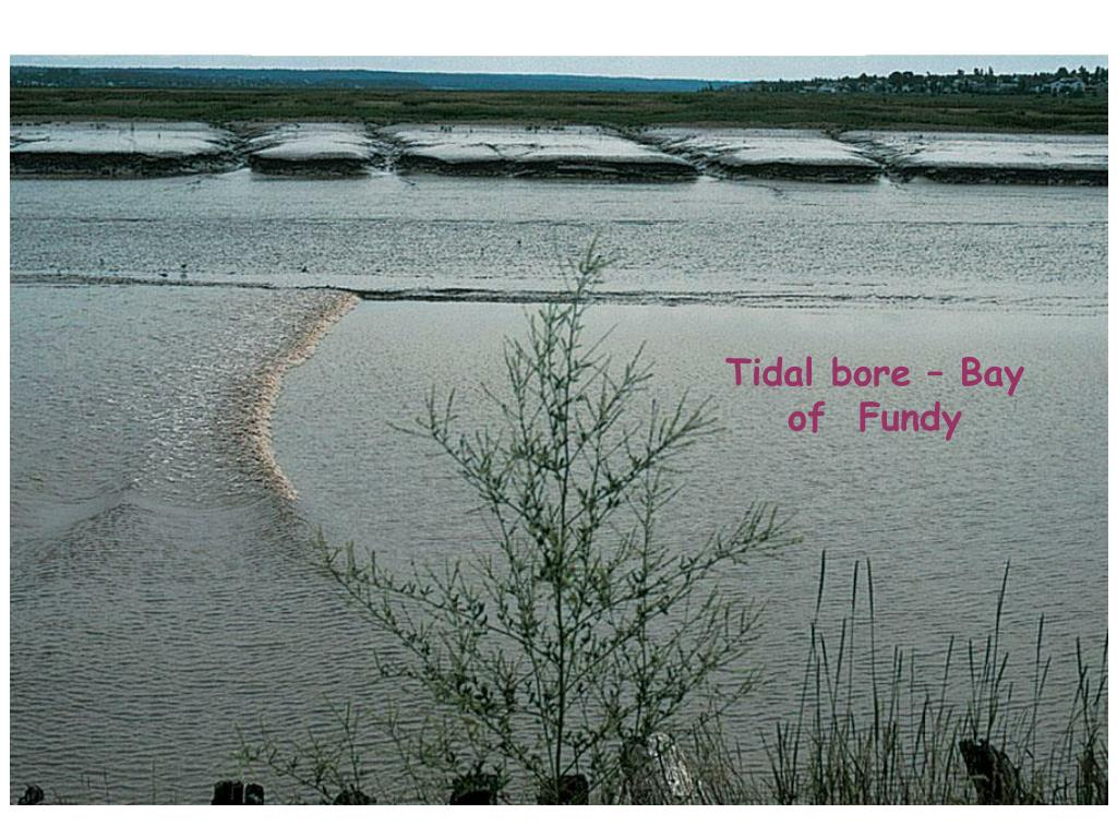 Tidal bore – Bay of  Fundy