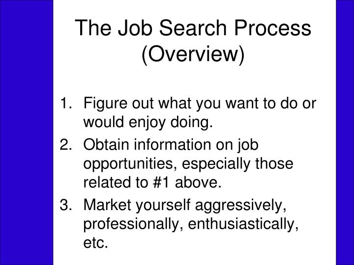 the job search process overview n.