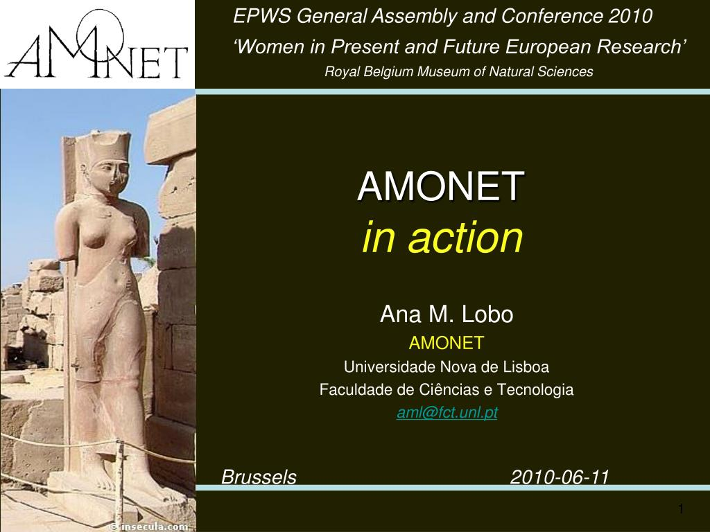amonet in action l.