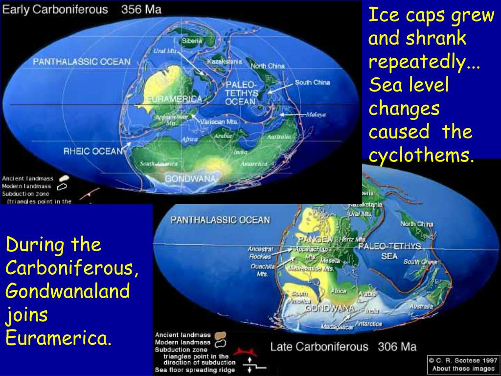Ice caps grew and shrank repeatedly... Sea level changes caused  the cyclothems.