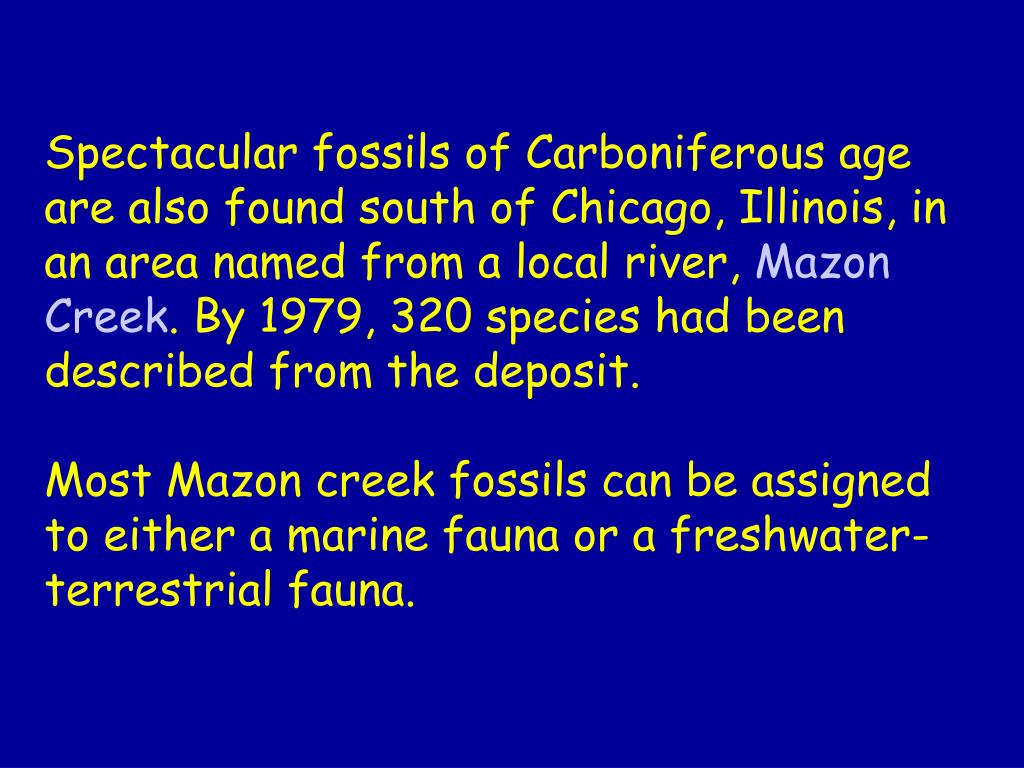 Spectacular fossils of Carboniferous age are also found south of Chicago, Illinois, in an area named from a local river,