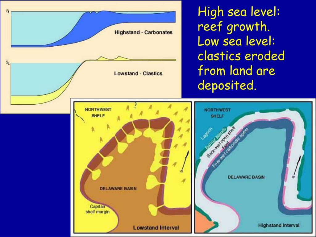 High sea level: reef growth.