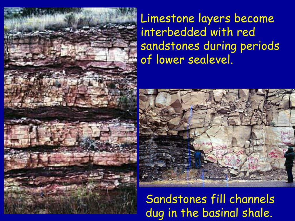 Limestone layers become interbedded with red sandstones during periods of lower sealevel.