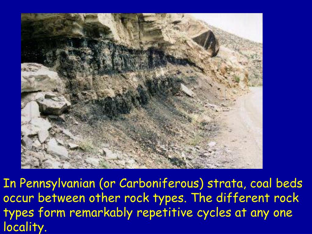 In Pennsylvanian (or Carboniferous) strata, coal beds occur between other rock types. The different rock types form remarkably repetitive cycles at any one locality.