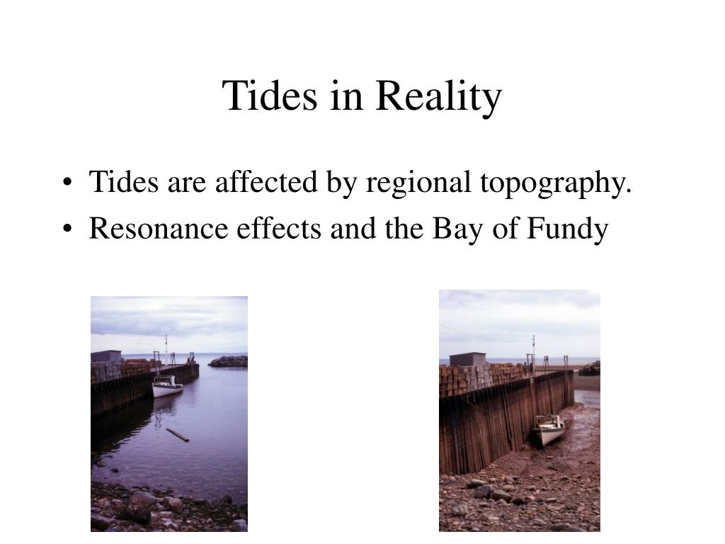 Tides in Reality
