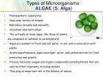 types of microorganisms algae s alga
