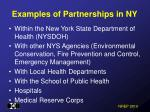 examples of partnerships in ny
