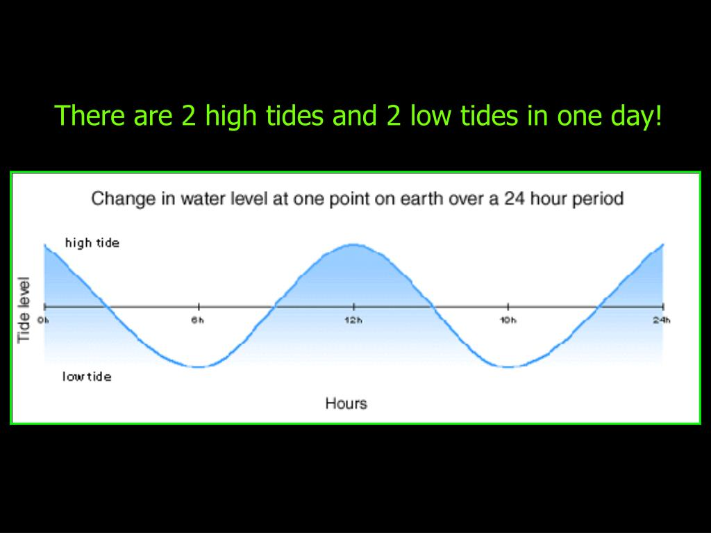 There are 2 high tides and 2 low tides in one day!
