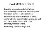cold methane seeps