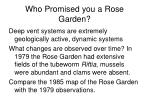 who promised you a rose garden