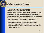 other auditor issues