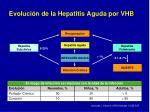 evoluci n de la hepatitis aguda por vhb