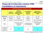 fases de la infecci n cr nica vhb candidatos al tratamiento