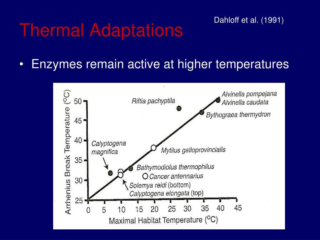 Thermal Adaptations