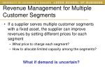 revenue management for multiple customer segments1