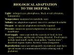 biological adaptation to the deep sea