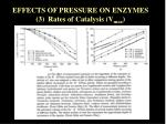 effects of pressure on enzymes 3 rates of catalysis v max
