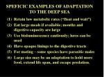 speficic examples of adaptation to the deep sea