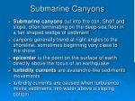 submarine canyons