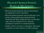 physical chemical particle removal mechanisms