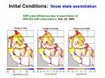 initial conditions snow state assimilation19