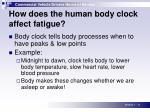 how does the human body clock affect fatigue