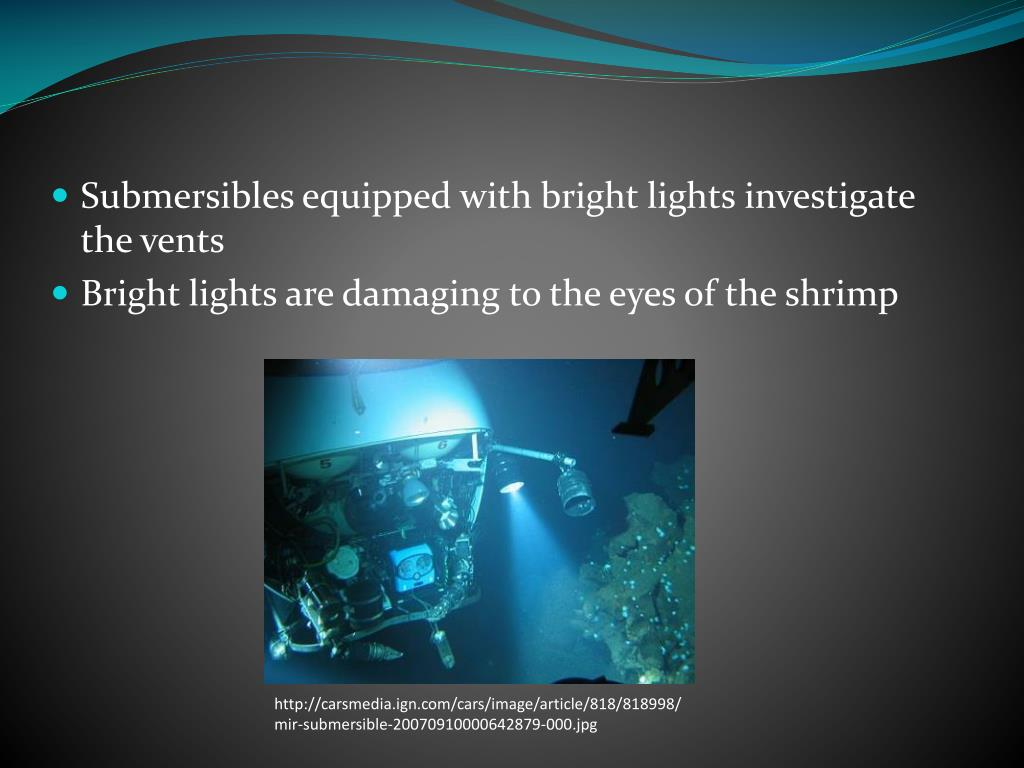 Submersibles equipped with bright lights investigate the vents