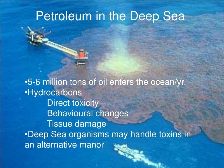Petroleum in the Deep Sea