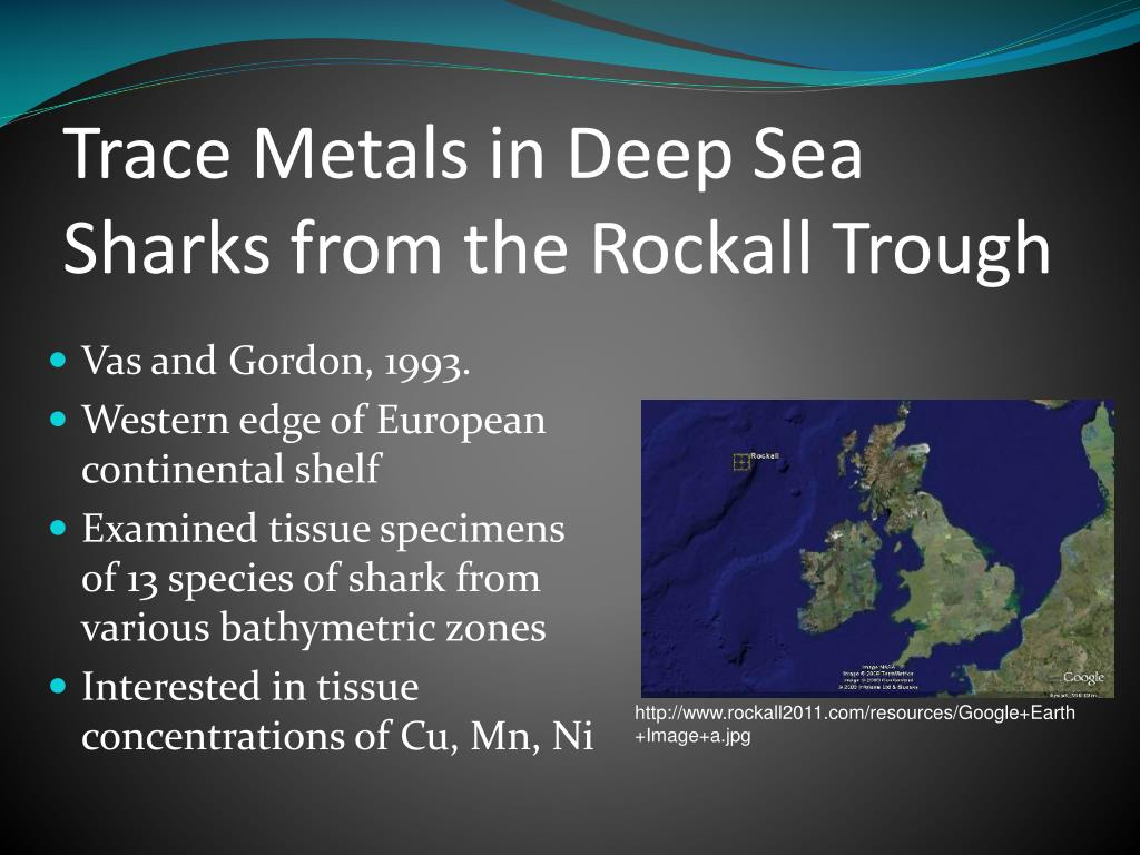Trace Metals in Deep Sea Sharks from the Rockall Trough