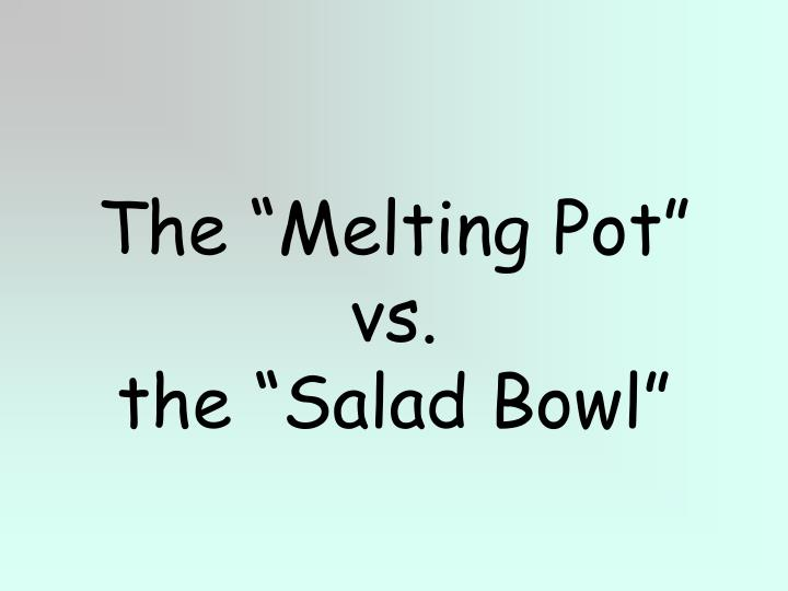 the melting pot vs the salad bowl n.