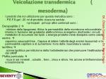 veicolazione transdermica mesoderma2