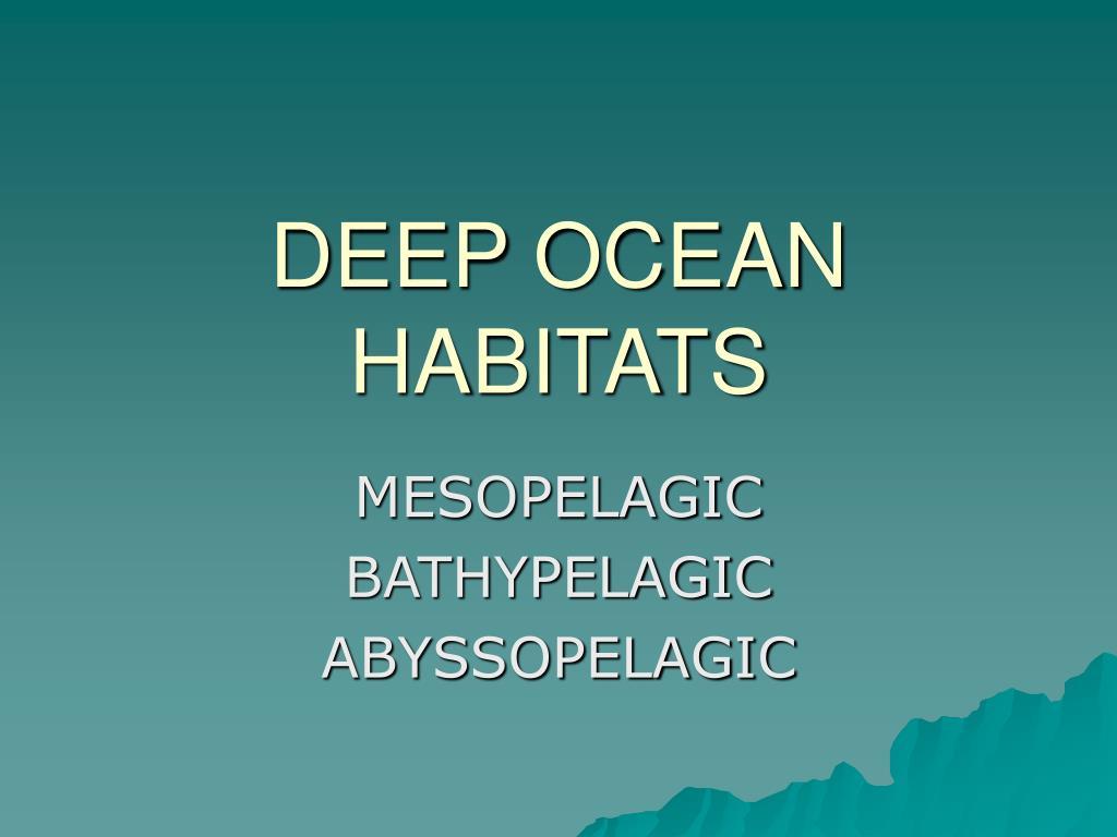 deep ocean habitats l.